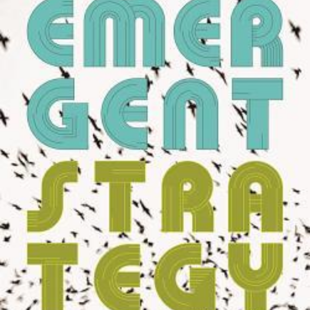 White Background with black birds flying in the distance. Text Reads: Emergent Strategy